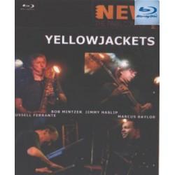 Yellowjackets – Nwe morning...