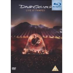 David Gilmour Live in...